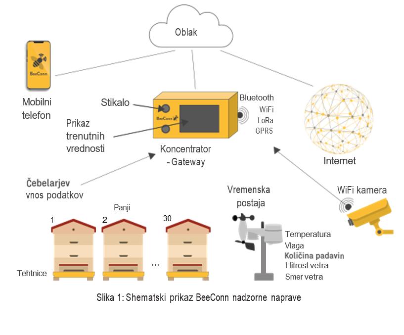 kampanja #zacebele: BeeConn aplikacija omogoča pregled nad čebelami za kvaliteten med